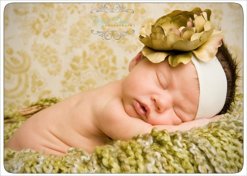 Tags bountiful utah newborn photography centerville utah newborn photography davis county newborn photography farmington newborn photographer